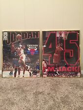 (2) Rare Vintage Michael Jordan 16 x 20 Posters in Frame Im Back #45 Collectible