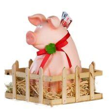 XXL Sparschwein Jimmy mit Stall - Glücksschwein - Geldgeschenk