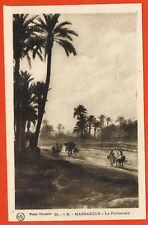 Carte postale animée - Maroc - Marrakech - La Palmeraie - Chameau
