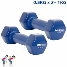 Set Manubri blu per body building