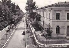 # CAVE: VIALE GIULIO VENZI - EDIFICIO SCOLASTICO   1958