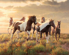 HORSE ART PRINT - Paints by Greg Alexander Wildlife Ranch Cowboy Poster 16x20