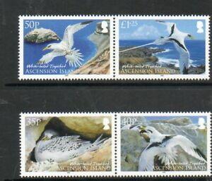 ASCENSION 2009 TROPIC BIRD SET FINE UM/MNH