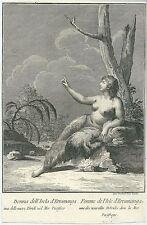 1790 DONNA DELL'ISOLA D'ERRAMANGA etching Teodoro Viero Erromango Taféa Vanuatu