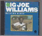 BIG JOE WILLIAMS - walking blues CD