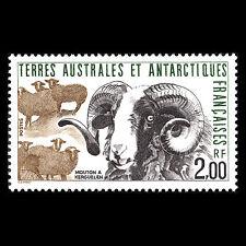 TAAF 1989 - Flora and Fauna Wild Animals - Sc 149 MNH