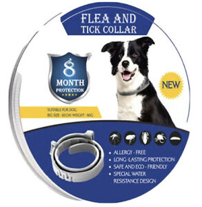 Flea and Tick Collar 8 Month Protection For Pet Dog, And Cat ; Adjustable