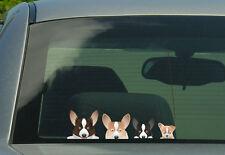 Welsh Corgi Family Stickers, Decals 001