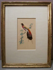 "VINTAGE ASIAN BIRD COLLAGE__Watercolor & Real Feathers__8.25""x10.75""__SHIPS FREE"