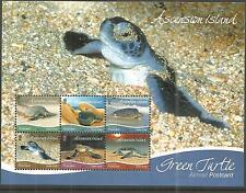ASCENSION ISLANDS 2015 GREEN TURTLES MINI SHEET U/M NH LOT 191A