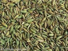 FENNEL SEED 50gm Foeniculum vulgare Certified Organic HERB TEA
