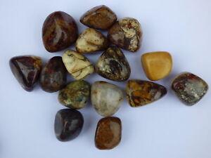 Pietersite Tumble Stone (UK based crystal shop, stock & shipping)