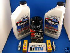 Suzuki LTF500F Quadrunner Oil Filter Spark Plug Tune Up
