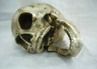 collectables ! Archaic Chinese Tibet silver In-D Copper skull framework statue