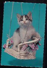 Vintage Postcard Adorable Cat / Kitten in Swing - Hallmark - Unused - #2