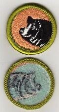 Hog Production Merit Badge, Type H, Blue Back Version (1972 - 1975), Mint!