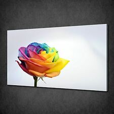 COLOURFUL RAINBOW ROSE FLOWER CANVAS WALL ART PRINT PICTURE READY TO HANG