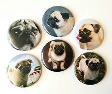 Pug Dog Fridge Magnets Set 55mm 6pc Kitchen Decor Gift