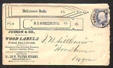 USA #206 STAMP BALTIMORE BELLE JUDSON CO. ROCHESTER NEW YORK AD COVER 1880s
