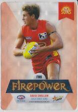 David Swallow 2013 Select Champions Gold Coast Firepower Mirror FM8