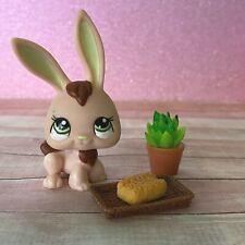 100% AUTHENTIC Littlest Pet Shop LPS #1019 Orange Rabbit w Accessories