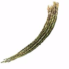 Organic Sweetgrass Braid Energy Cleansing Smudge Herb American Smudging Incense