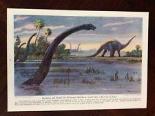 1942 vintage Original magazine art illustration Grotesque Diplodocus