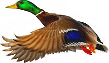 MALLARD DUCK Bird Flying Outdoor Water Widlife  - WindoCling Decal Stick-On NEW