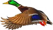 MALLARD DUCK Water Fowl Bird In Flight  - Window Cling Sun Catcher Sticker Decal