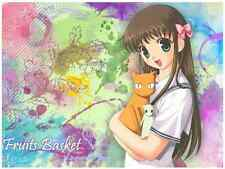 Lot mangas Fruits basket tomes 1 à 23 Intégrale Shojo Natsuki Takaya Delcourt VF