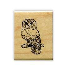 SAW WHET OWL mounted rubber stamp, night bird of prey #9