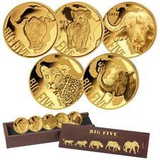 Kamerun 5 x 100 Francs 2018 - Big Five Mini Kollektion - Gold PP in Holzbox