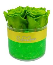 Preserved-GREEN-Roses|Gift|Birthday|Wedding|Christmas|Decor|Long-Lasting|Luxury|