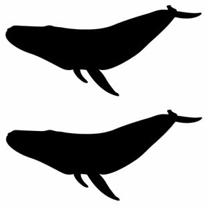 Qty 2 Blue Whale Stickers Car Window Wall Decals Any Colour 10cm - 50cm
