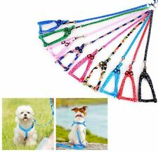 Small Dog/Puppy/Pet Strong, Fully Adjustable, Paw Print Harness & Lead/Leash