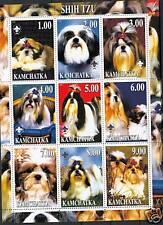 CANI - SHIH TZU DOGS KAMCHATKA 2000