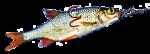 Bavaria Premium-Fishingtackle