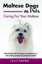 Maltese Dogs As Pets : Maltese Breeding, Where to Buy, Types, Care, Temperame...