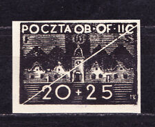 (PL) Polish Officers POW Camp Woldenberg Fi 43 blackprint expertised