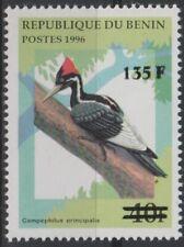 Benin 2000 Mi. A1246 Bird Campephilus Principalis Fauna RARE Overprint MNH**