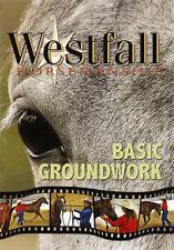 Groundwork Stacy Westfall Horse Training DVD