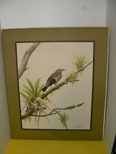 1968 Don Richard Eckelberry Signed Litohgraph Palm Tanager Series1 Plate 1