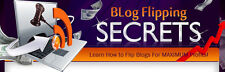 Blog Flipping Secrets eBook + Videos on CD