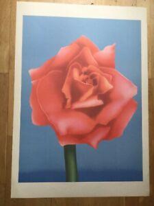 Adrian George Print Pychedelic 60s botanical poster Rose Pop Art  Ltd Ed