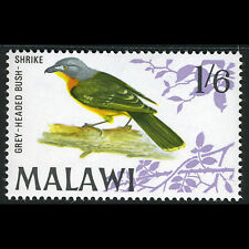 MALAWI 1968 1s6d Grey Headed Bush Shrike. Bird. SG 317. MNH. (CA72K)