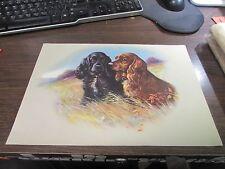 Vintage Calendar Art, Two Fantastic Dogs - 9.5 X 13-3/4