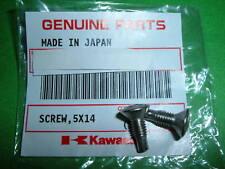 KAWASAKI  Z1, KZ900, KZ1000  HEADLIGHT SCREWS  NOS  OEM