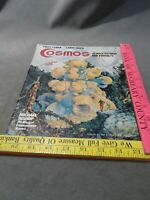 Cosmos Science Fiction and Fantasy Magazine May 1977 Vol. 1 No. 1