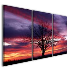 QUADRI MODERNI FANTASTIC TREE WHIT SUNSET STAMPE CANVAS ARTE DESIGN ARREDAMENTO
