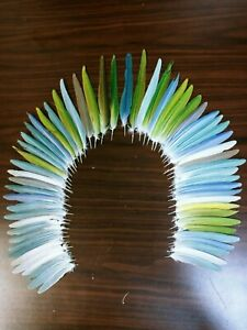 Parakeet feathers(macaw)